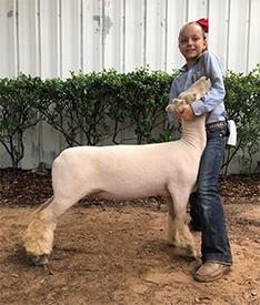 Kennedy Livestock ▫ Winners